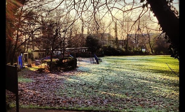 Frozen Park #camberley #park #winter